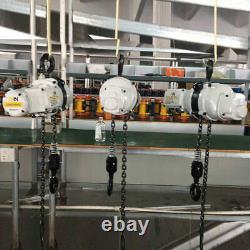 Lift Electric Hoist Overhead Crane Automotive Winch Remote Lifter Chain hoist